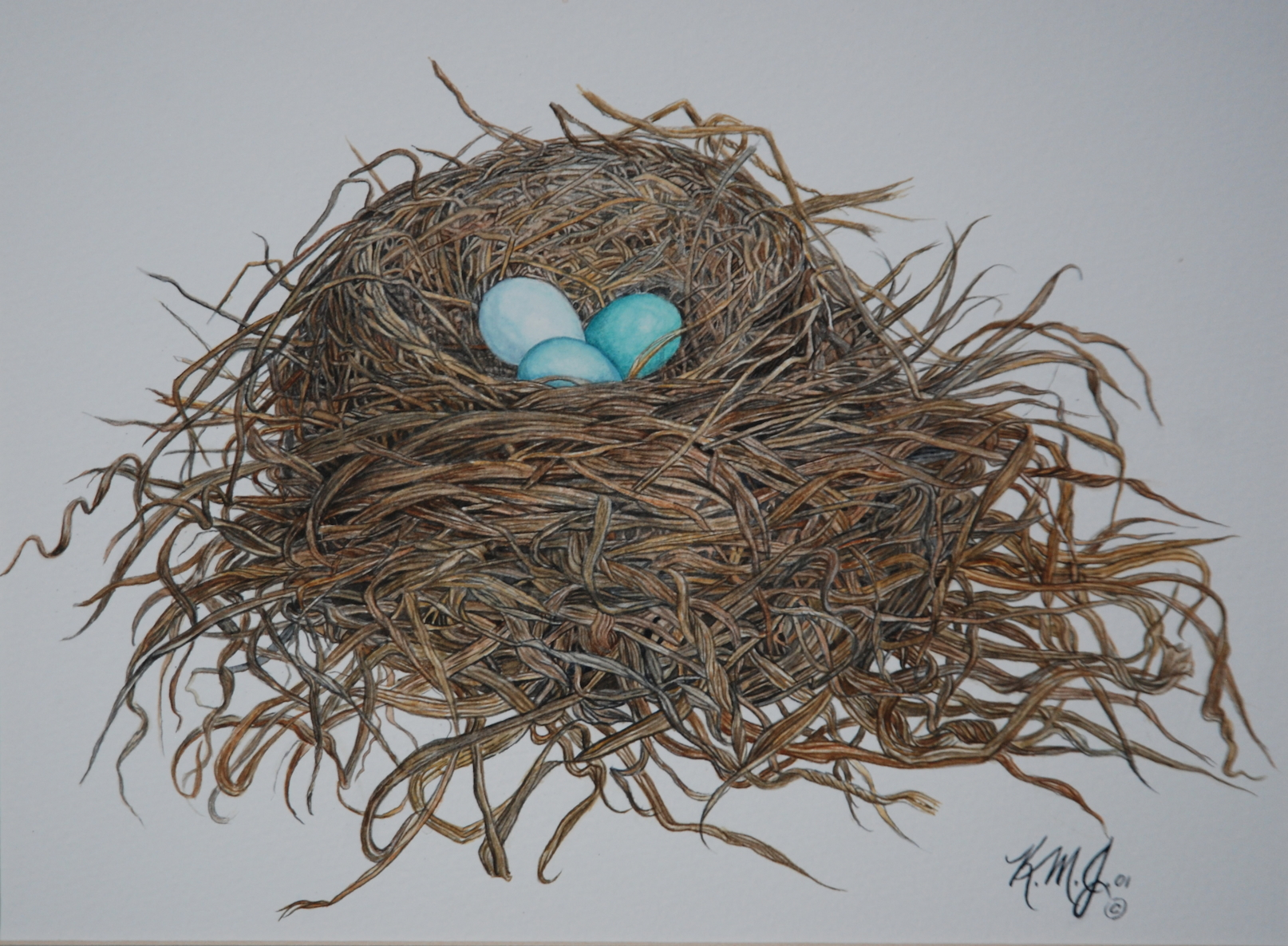 Robin's Nest, K Johnston