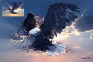 Susan,Eagle, with its cloud inspiration inset